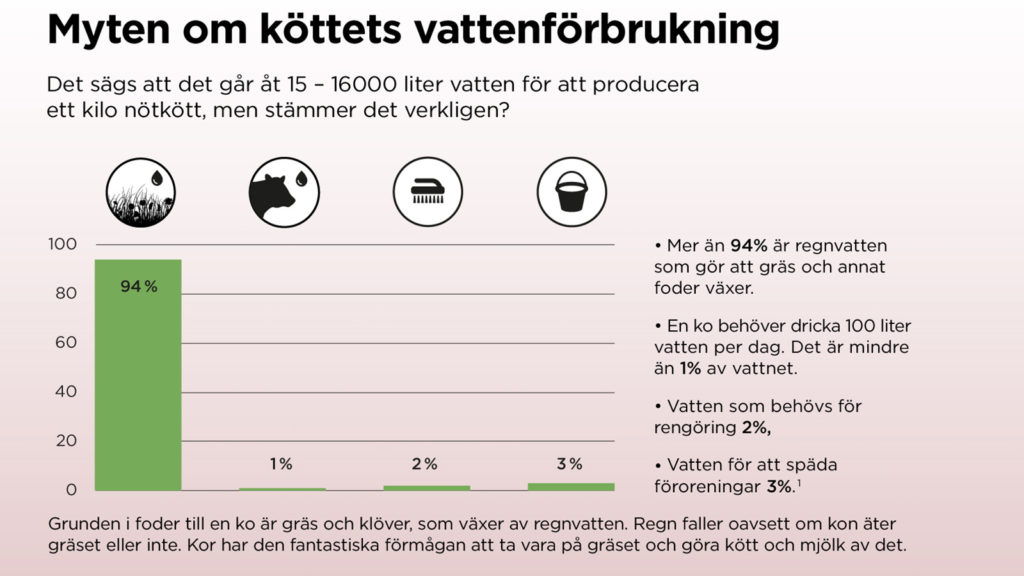 Myten om köttets vattenförbrukning