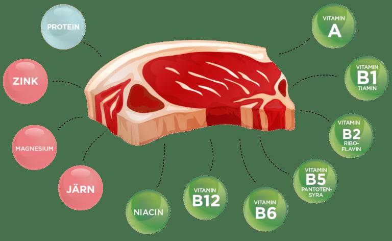 Näring i kött