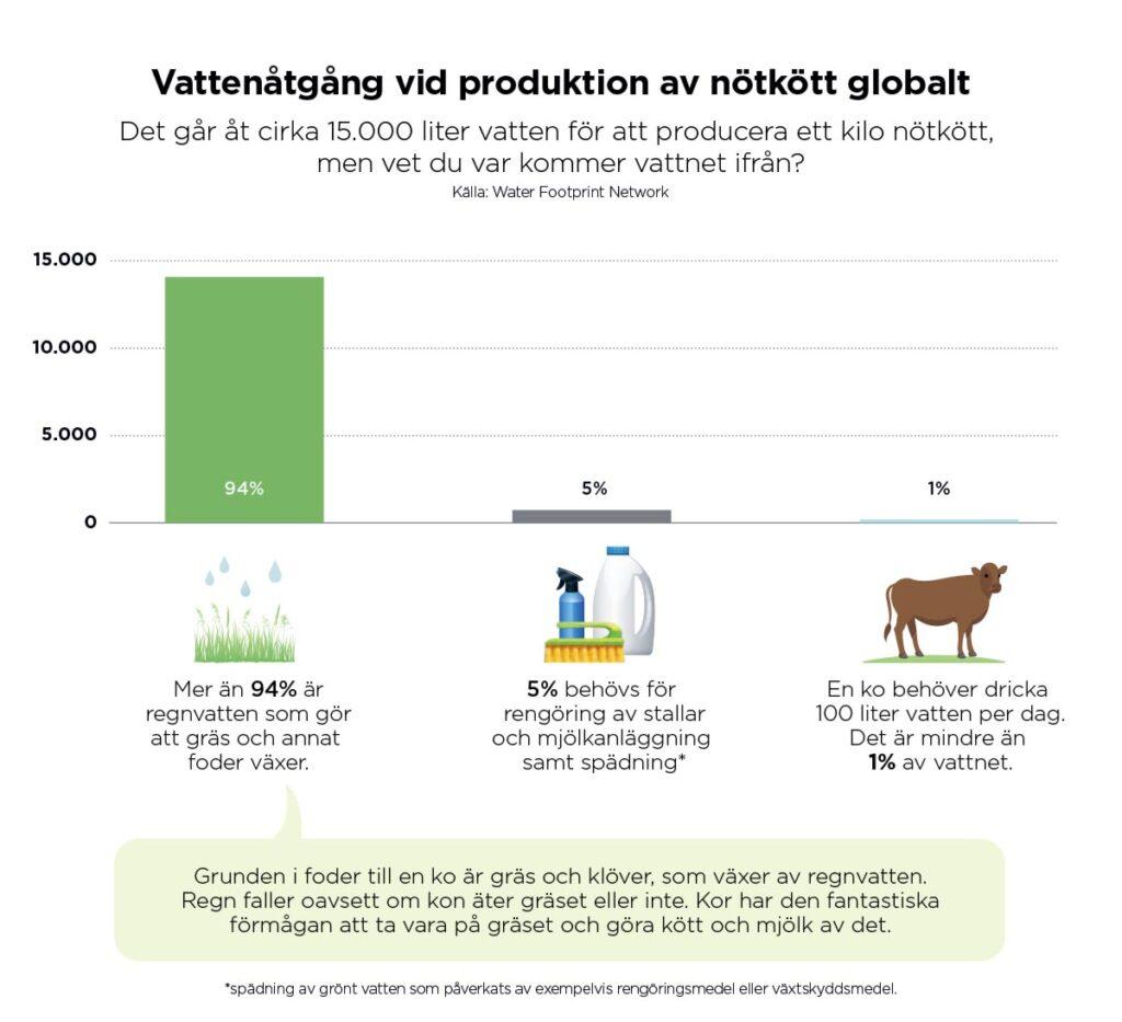 Vattenanvändningen för svenskt kött av nöt