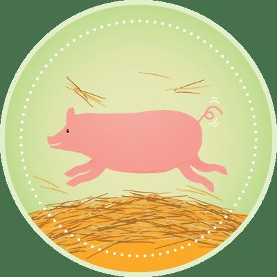 Djurskydd gris