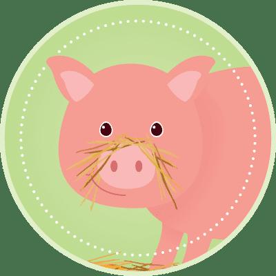 Svensa grisar får strö