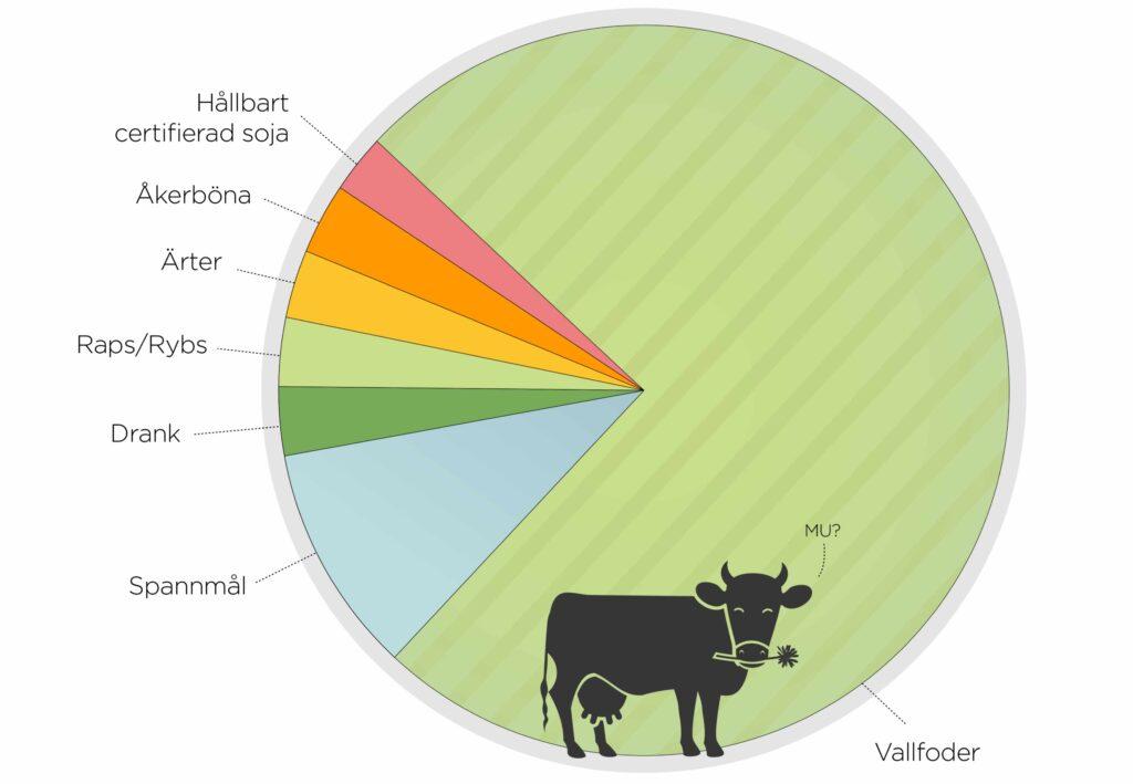 Vad äter en svensk ko?