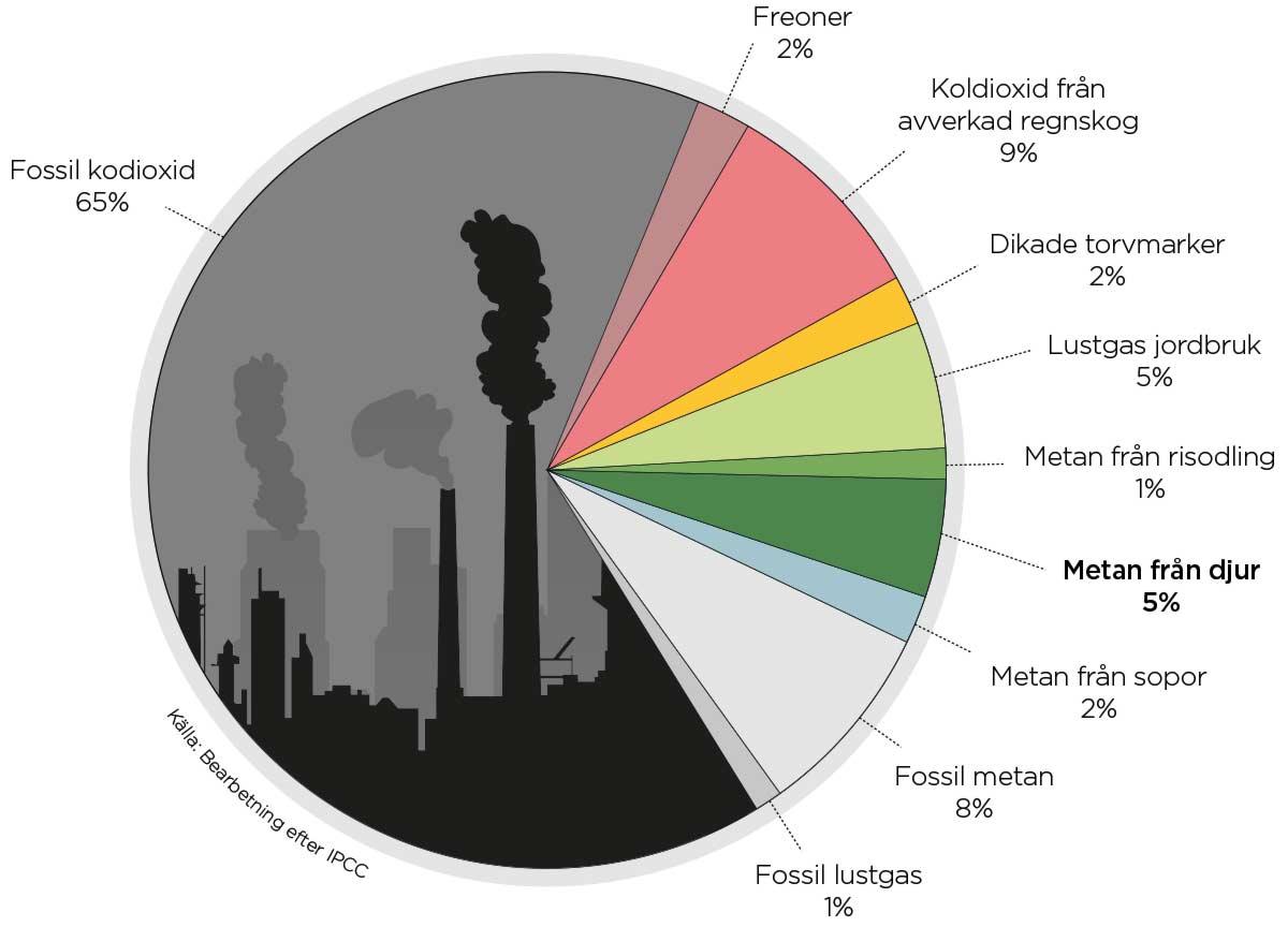 Globala utsläpp av växthusgaser i procent