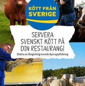 Servera svenskt kött på din restaurang broschyr