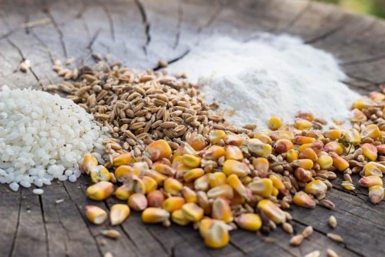 Ett varmare klimat förändrar tillgången på mat